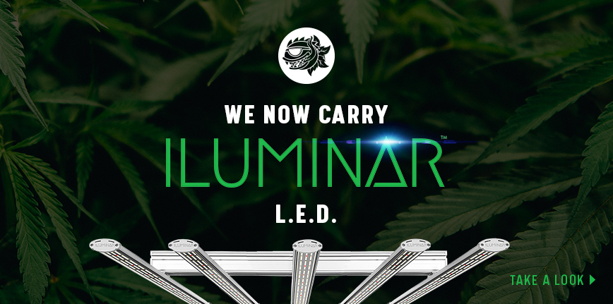 Iluminar LED Now Available Banner