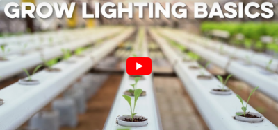 Grow Lighting Basics