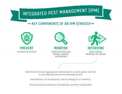 Pest Patrol - Part 1: Integrated Pest Management - An Overview