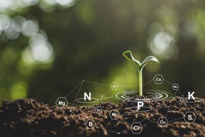 Plants Need Nutrients Too