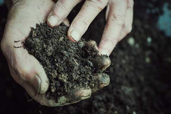 Recharging and Rejuvenating Soil for Reuse