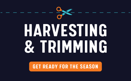 Harvesting and Trimming